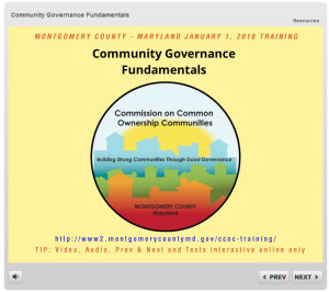 Community Governance Fundamentals